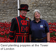 Carol planting poppies at the Tower of London