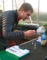 The Soil Testing Kit in action!