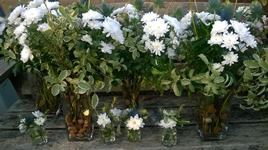 Flowers for Burns Night
