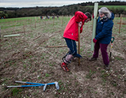 Carol and Lee planting a tree at Langley Vale