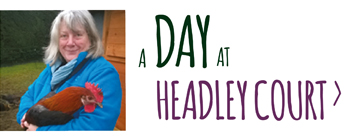 A day at Headley Court