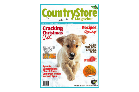 CountryStore-cover-250x358
