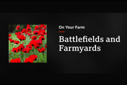 Battlefields and Farmyards
